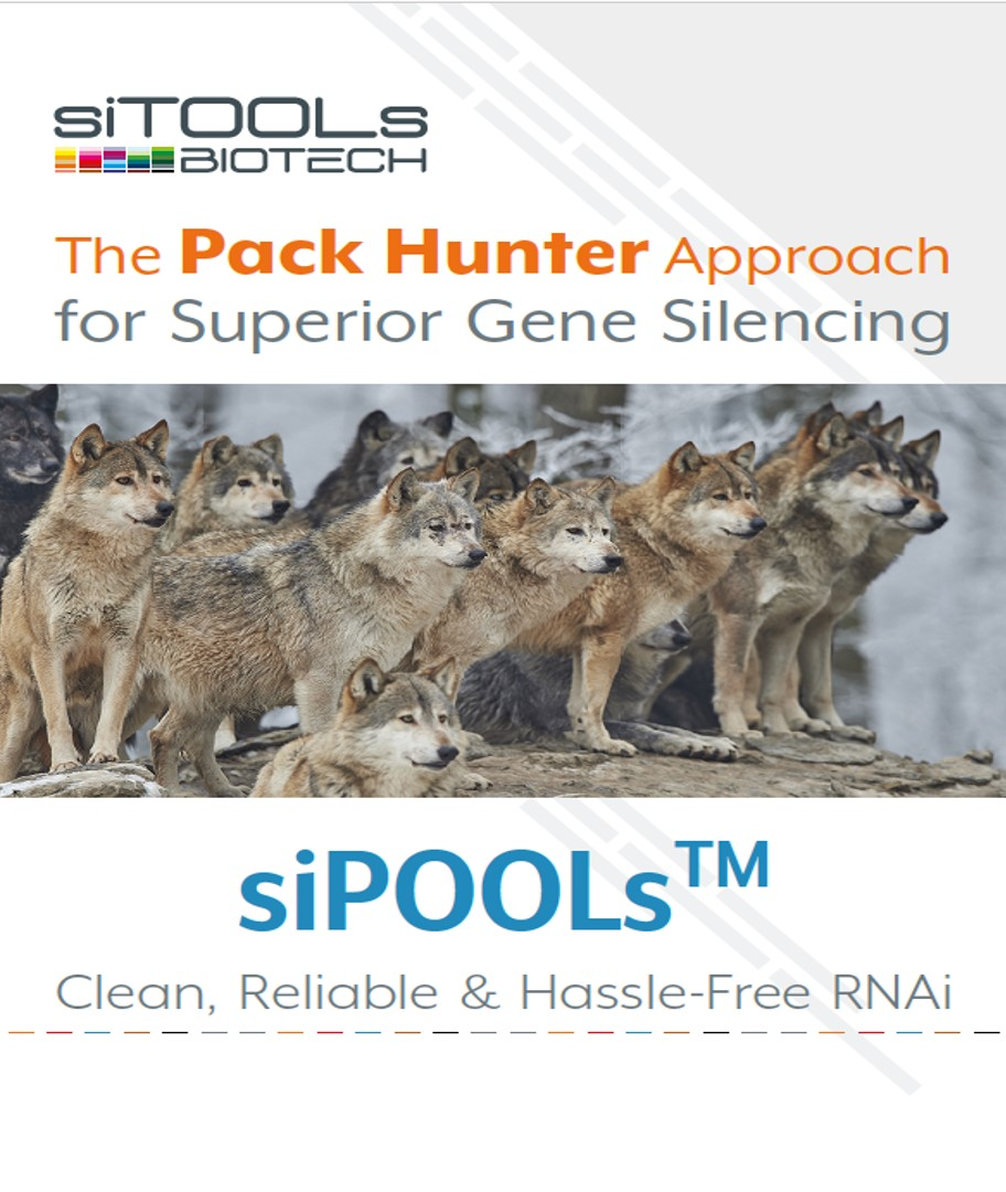 The siPOOL Guide - Pack Hunter Approach to Superior Gene Silencing, Clean, Reliable and Hassle-free RNAi